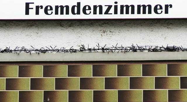 Flüchtlinge in Deutschland- Wer profitiert?